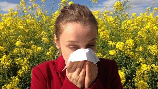 Calendario dei pollini: il periodo di impollinazione dei fiori