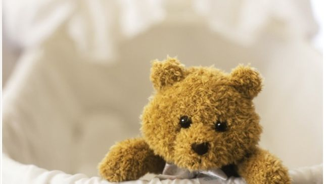 Teddy, il più giovane donatore di organi al mondo