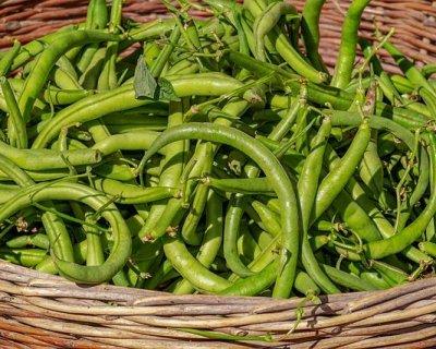 Ricette con fagiolini per un'estate in leggerezza