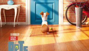 Pets - Vita da animali: dai creatori di Cattivissimo Me, un nuovo divertente film