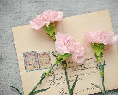 Partecipazioni Matrimonio Con Girasoli : Tutto ciò che devi sapere sulle partecipazioni di nozze