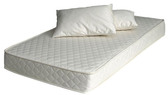Cimici dei letti come debellarle - Prurito diffuso a letto ...