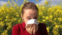 10 pollini che creano maggiori allergie