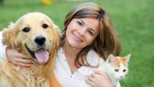 Le zecche nel cane e nel gatto: come eliminarle efficacemente