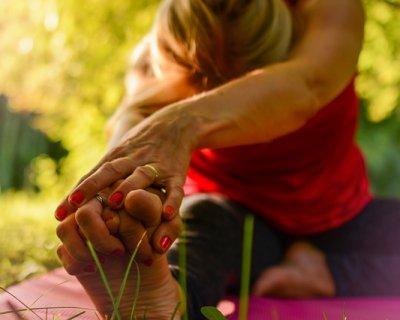 """Lo yoga con le capre è più efficace. Il """"goat yoga"""" conquista l'America"""