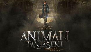 Animali fantastici e dove trovarli: lo spin-off di Harry Potter arriva al cinema
