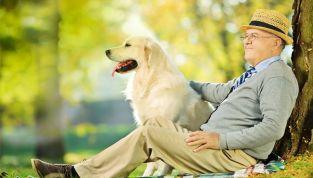 Residenza per anziani: da oggi anche con gli animali