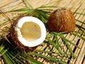 Latte di cocco: benefici e come prepararlo