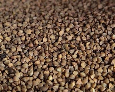 Grano saraceno, il non cereale, dalle origini antiche