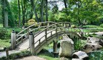 Storia del giardino: l'evoluzione del giardino nel corso dei secoli