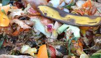7 App contro lo spreco alimentare
