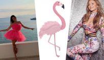 Flamingo pose: la moda che impazza tra i vip