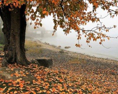 Vacanze in autunno: dove andare?