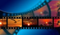 5 Film on the road per sognare dal divano