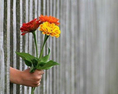 La gentilezza verso sé stessi con la self compassion