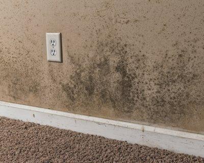Muffa in casa - Togliere umidita in casa ...