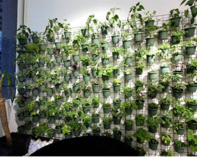 Verde verticale: nuova moda degli orti urbani