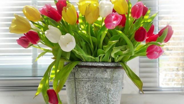 Come far vivere a lungo i fiori recisi