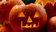 Halloween ecologico