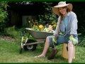 Influenze della luna sulle piante - Compost casalingo ...