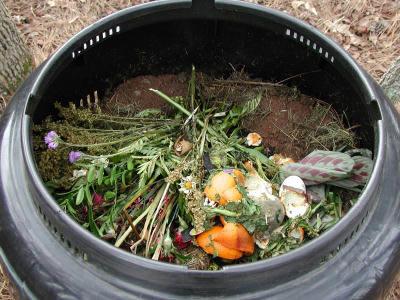 Compost casalingo 15 cose domestiche da compostare - Compost casalingo ...