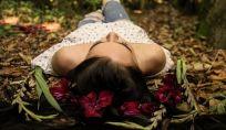 Ecodermocosmetologia, bellezza sicura per noi e per l'ambiente
