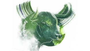 Oroscopo 2012 Toro