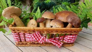 Menu di Natale ai funghi