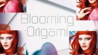 Blooming Origami di Kiko