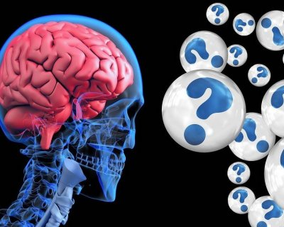 Terapie complementari per curare l'Alzhaimer