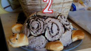 Torta di compleanno a forma di tartaruga