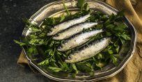 Il pesce azzurro nell'alimentazione dei bambini