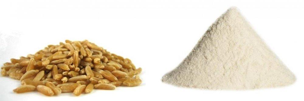Kamut® o grano Khorasan