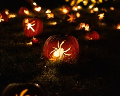 Tutorial per addobbi di halloween fai da te - Decorazioni autunnali per finestre ...