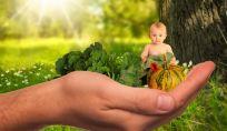 La nutrizione nel primo anno di vita del bambino