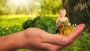 Fabbisogno nutrizionale nel primo anno di vita