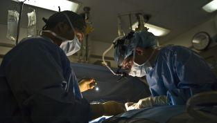 Angelina Jolie si è sottoposta a mastectomia preventiva