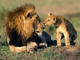 Autonomia e responsabilità ciò che un padre dona a un figlio