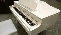 Si è celebrato Domenica 21 Luglio, il matrimonio di Tina Turner ed Erwin Bach