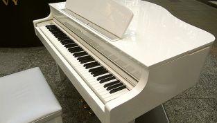 Tina Turner si è sposata