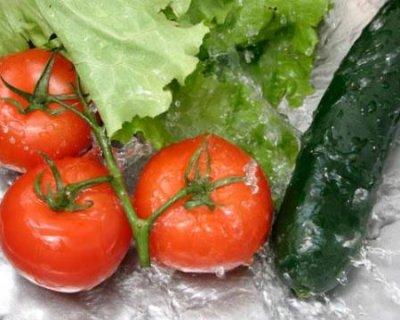Come conservare correttamente gli alimenti freschi in estate