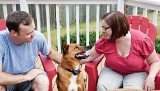 """Top ten dei paesi pet friendly, le 10 nazioni più """"amiche"""" degli animali domestici"""