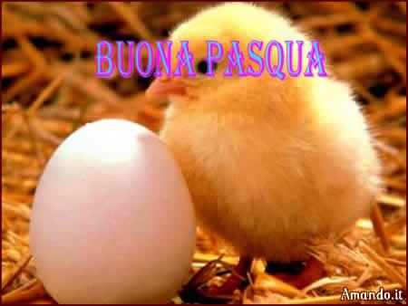pps Buona Pasqua