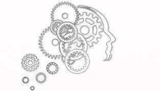 Psicologia analogica