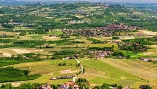 La tradizione del tartufo in Piemonte