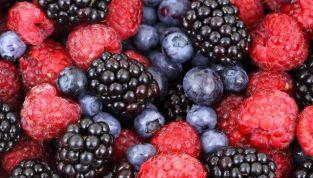 Come mantenersi in forma con i frutti di bosco nella dieta quotidiana