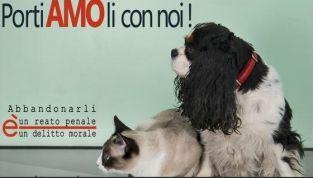 PortiAMOli con noi, diciamo no all'abbandono degli animali!