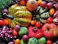 Ricette autunnali sane, gustose e colorate