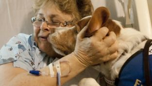Una zampata alle terapie: pet therapy in oncologia
