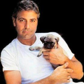George Clooney - Foto 13